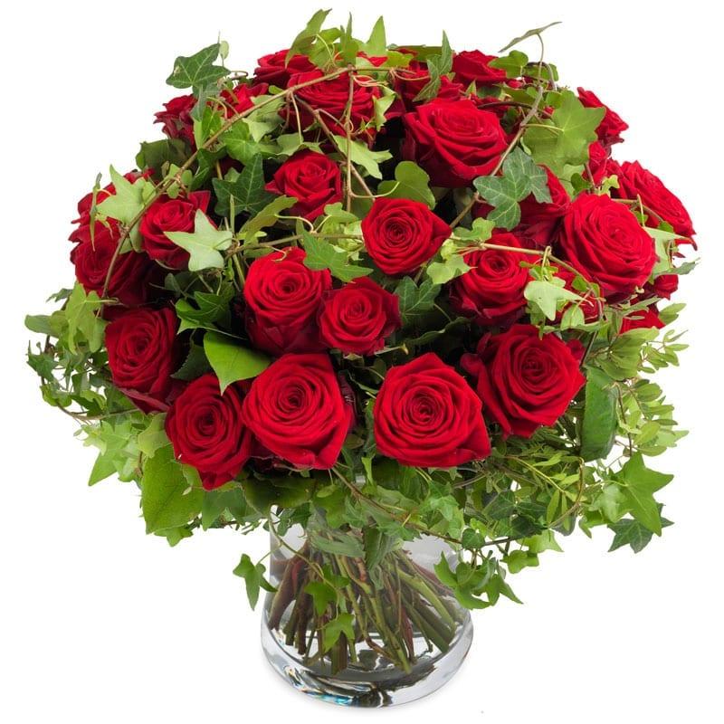 recht uit het hart rozen groot